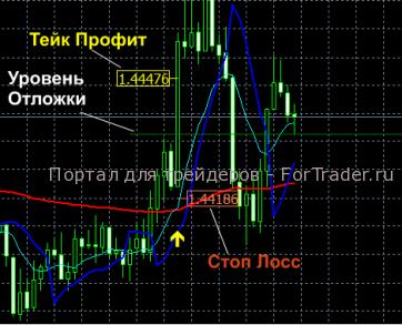 Торговая стратегия для индикатора Rubicon