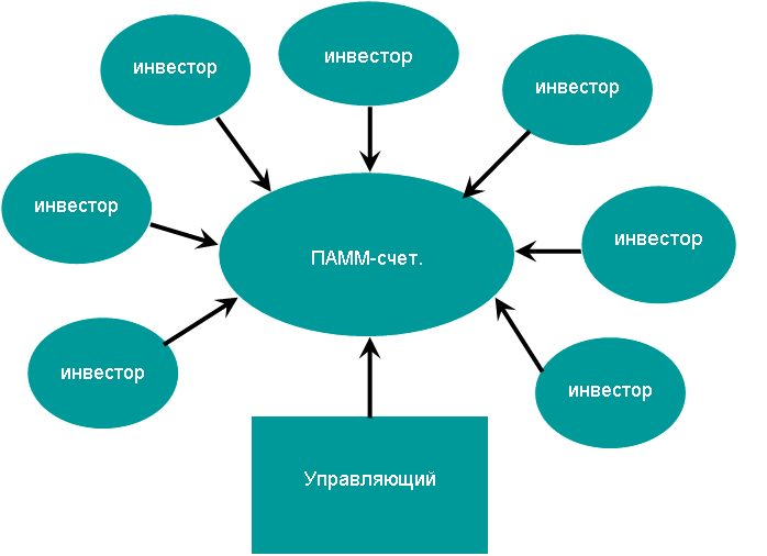 Инвестиции в форекс памм top forex broker canada