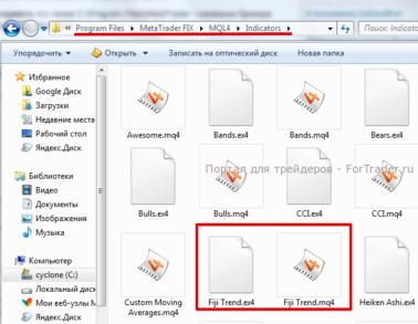 Рис. 3. Файлы  индикатора, скопированные в папку торгового терминала.