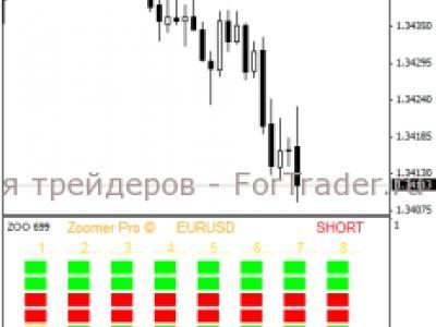 Форекс описание индекатора zoomer pro форекс прогноз 23 января 2012