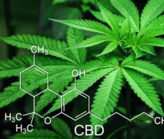 Налог на наркотики