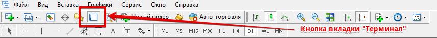 Рис.1. Кнопка вызова вкладки «Терминал»