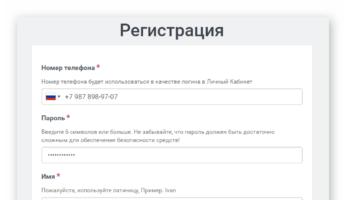 Информационное поле для регистрации нового клиента в компании
