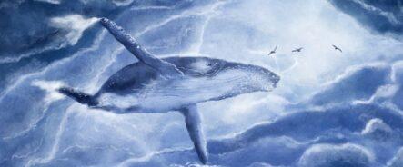 Трейдер-кит